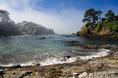 buckhorn_cove_morning.html