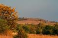 coronado_heights_fall_view.html