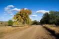 kansas_fall_road.html