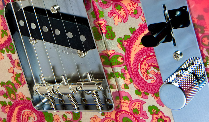 Pink Paisley Tele Up Close || Canon40d/EF17-55/F2.8EFS@38 | 1/8s | f16 |  ISO100 | tripod
