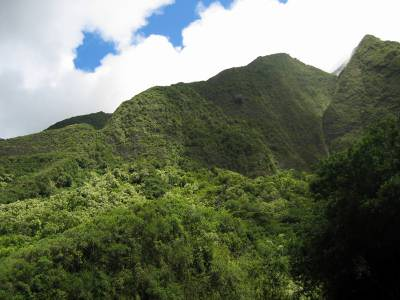 Iao Valley peak