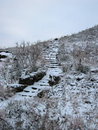 Coronado steps in the snow