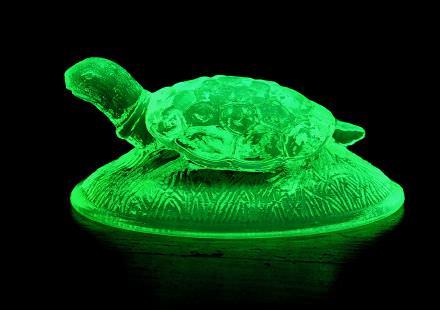 uranium glass turtle