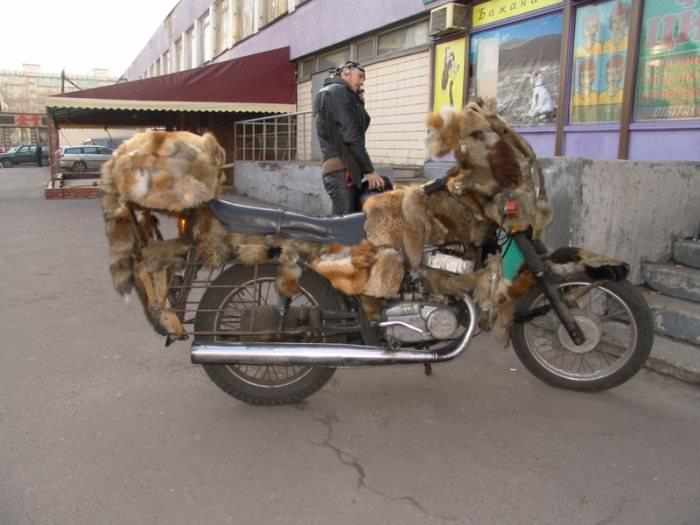 fuzzy bike