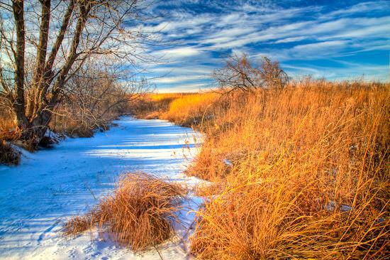 Battle Creek Winter