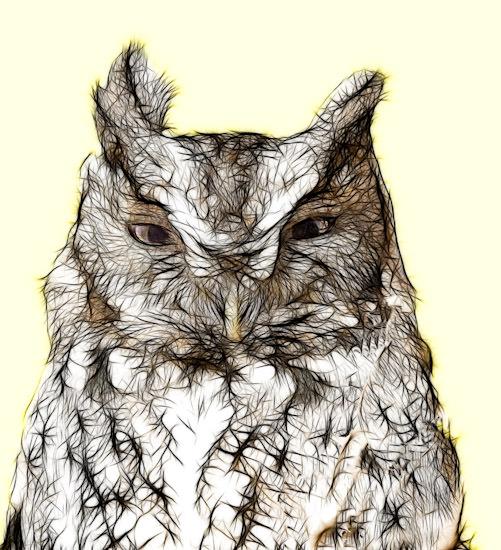 fractalius owl