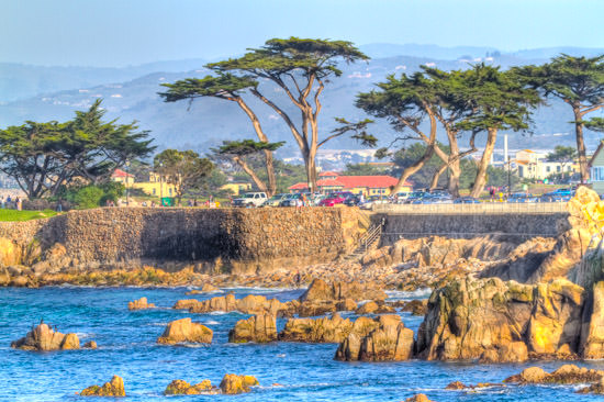 CA Trip 2010: Lovers Point, Pacific Grove